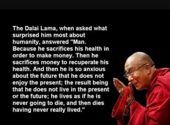 D lama life